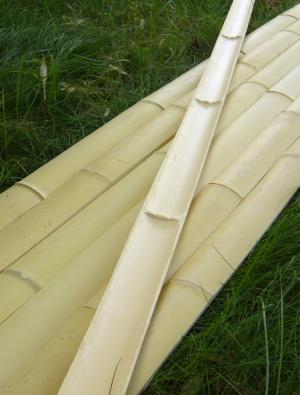 Kij bambusowy tyczka bambusowa i ich zastosowanie w domu for Vendita bambu